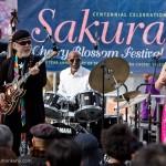 2.SakuraFest